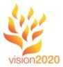 vision2020tenflames-97